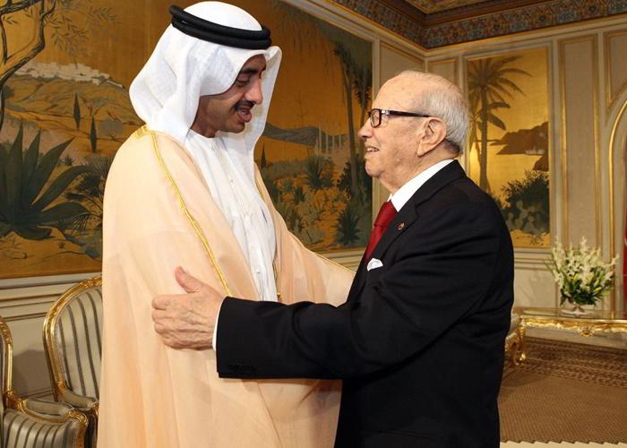التدخلات الإماراتية في دول المغرب العربي بين النجاح والفشل