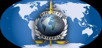 شرطة دبي تلقي القبض على 227 مطلوبا دوليا للأنتربول