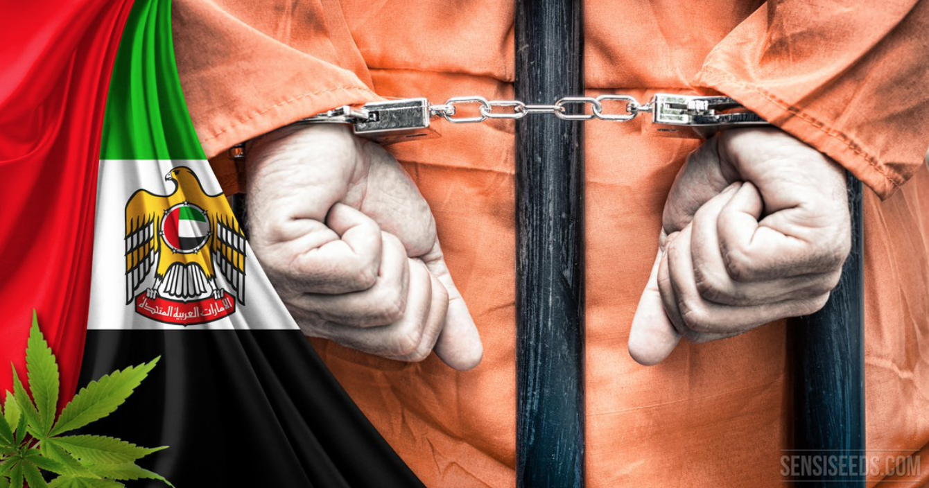 عام 2016 في الإمارات .. اعتقالات وأحكام بالسجن بحق الإصلاحيين