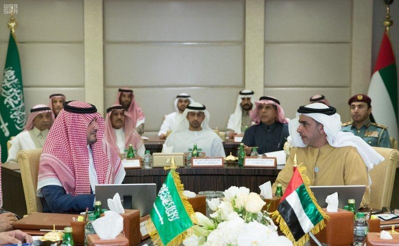 وزير الداخلية الإماراتي يبحث مع نظيره السعودي تعزيز التعاون الأمني