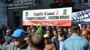 هل تتورط الإمارات في مظاهرات الجزائر ضد