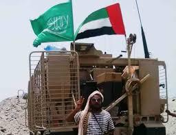 مسؤول بالخارجية الأمريكية: التحالف السعودي الإماراتي فشل في اليمن