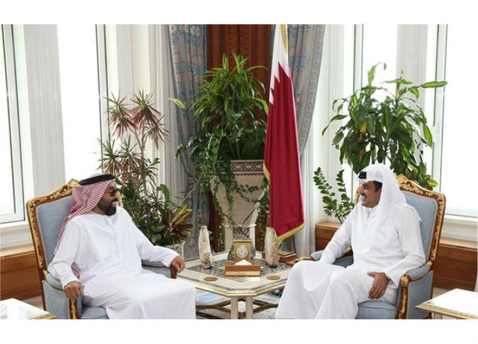 أمير قطر يلتقي نائب مستشار الأمن الوطني في الإمارات